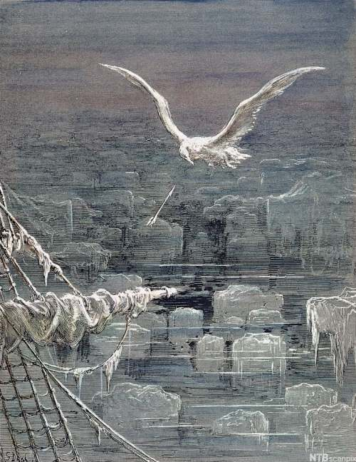 rime-of-the-ancient-mariner-albatross